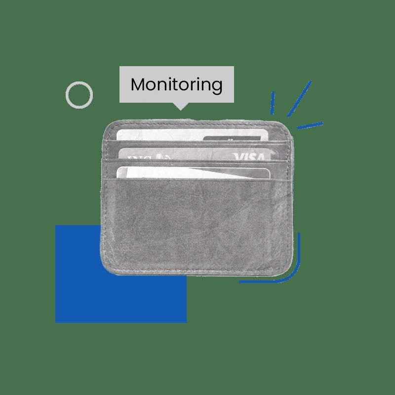 Financial Fraud Monitoring